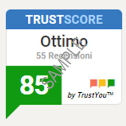 Trust-Score